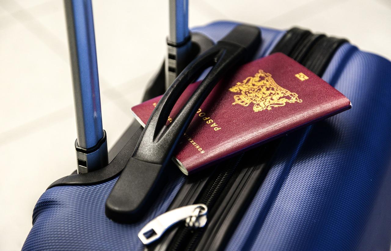 Quels sont les modèles de protège-passeport?